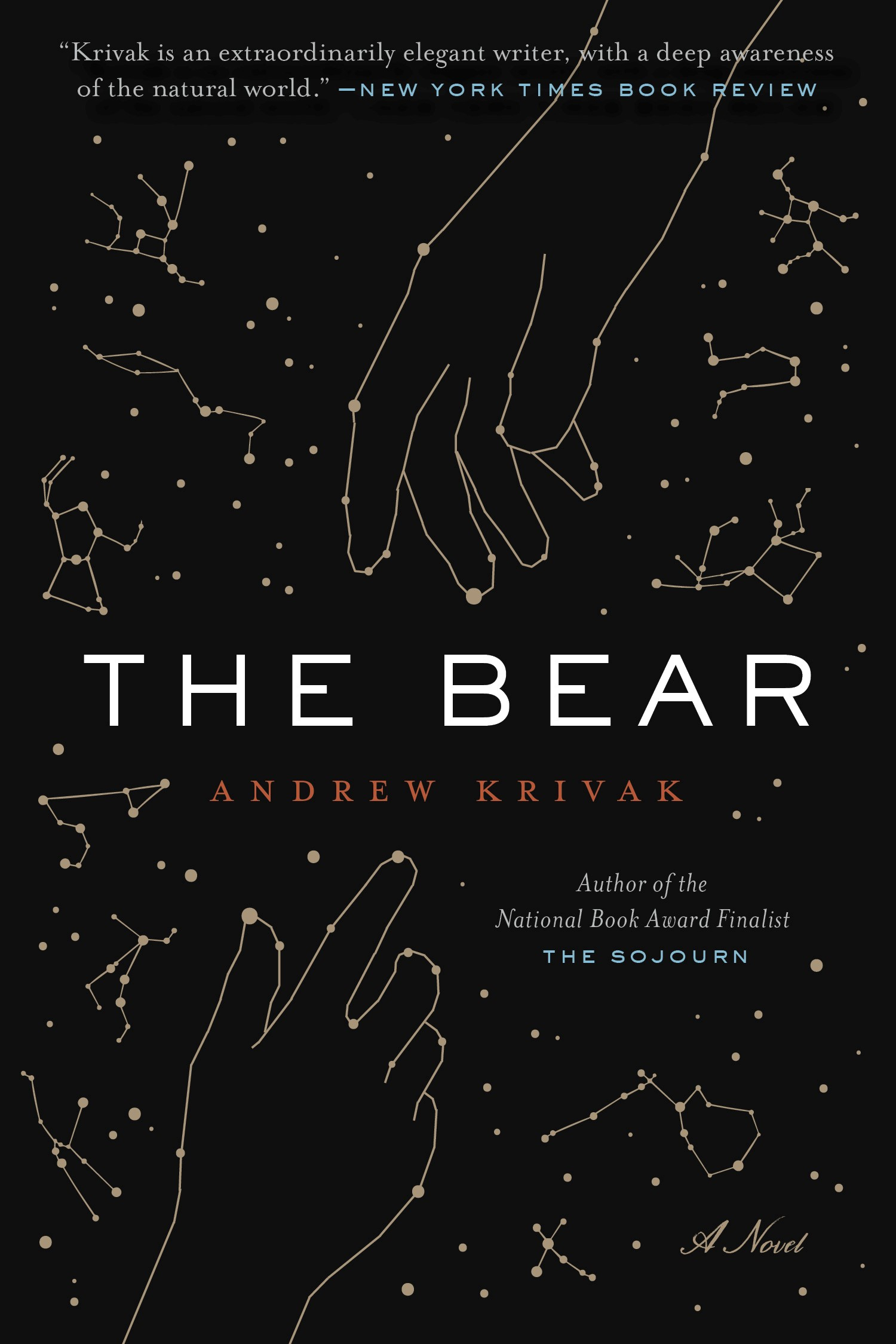 Book cover of The Bear by Andrew Krivak