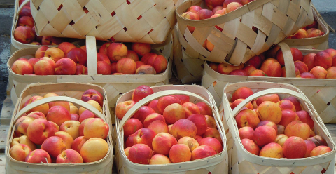 Peaches, Eastern Market / Detroit, Michigan. Photo by Flickr user AZKOPhoto, CC-BY 2.0<br />